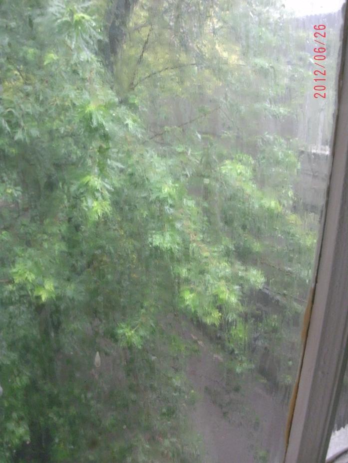 Ливень за окном